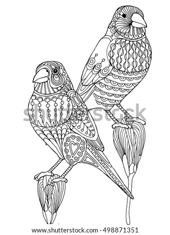 shelly beauchamp zen tangles coloring pages | Patterned Finch Bird Zentangle Page Adult Stock Vector ...