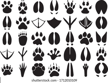 Paw Print Animal Paws Dog Paw Cat Paw Wild Animal Footprint Vector
