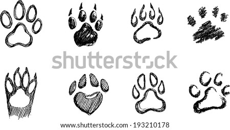 paw print set different hand drawn stock vector royalty free