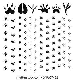 Paw print set. Isolated paw print on white background. EPS 10. Vector illustration