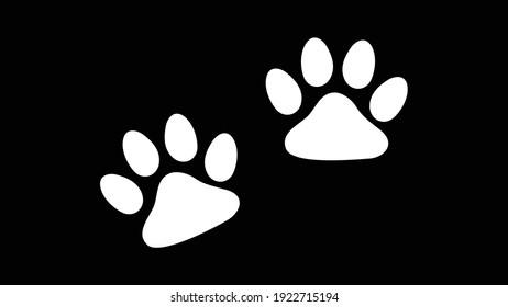 Paw prints of dog isolated on black, Black footprints of dogs - vector illustration