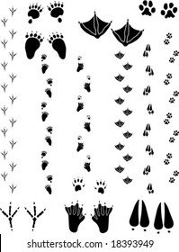 Paw prints and tracks. Top : Black Bear, Seagull, Cat. Bottom: Crow, Beaver, Deer Vectors are all clean objects easy to color or add background. All non-black areas are transparent in vector file