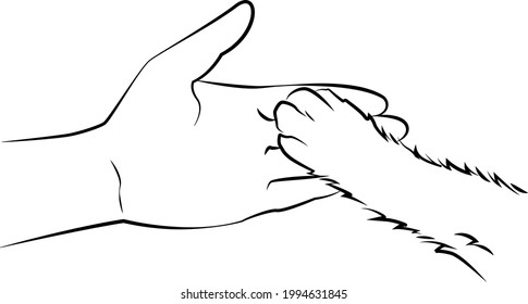 Paw of a puppy or kitten in a human hand