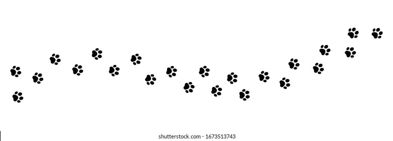 Paw vector foot trail print on white background.vector cat or Dog, path pattern animal tracks, isolated on white background