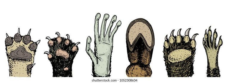 Paws of animals or footprints and wildlife. hands of monkey and dog, bear and frog, cat and hoof of cow. Domestic or farm or pets. Traces of mammals.