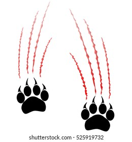 Paws of a big cat. Panther or tiger traces. Vector