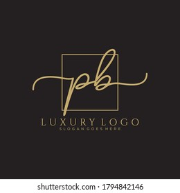 PB Initial handwriting logo template vector