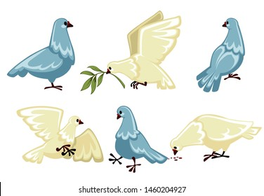 Peace symbol white dove or pigeon isolated animal vector olive branch flying bird wings flight plumage plant twig purity symbolic creature with beak, and claws clear plumage wedding ritual
