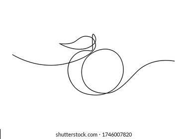 Peach fruit in continuous line art drawing style. Simple black sketch made of one line isolated on white background. Vector illustration