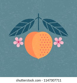 Peach illustration. Ripe peach with leaves and flowers on shabby background. Symmetrical flat composition. Shabby style.