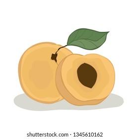Peach. Isolated. Vector.