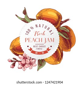 Peach jam paper emblem over colorful hand drawn peach branche. Vector illustration