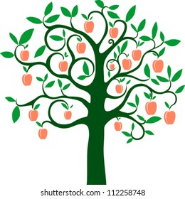 Peach tree isolated on White background. Vector illustration