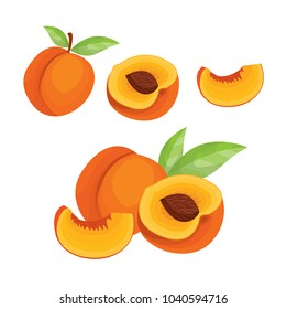 Peach. Vector set  in cartoon style. Isolated  fruits