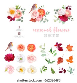 Peachy rose, white and burgundy red peony, orange ranunculus, carnation, hydrangea, autumn leaves, robin bird and mix of seasonal plants big vector collection. All elements are isolated and editable