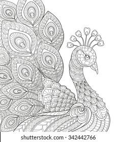 Birds Color Gorseller Stok Fotograflar Ve Vektorler Shutterstock
