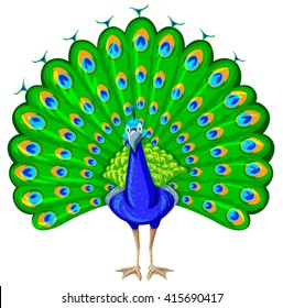 peacock clip art images stock photos vectors shutterstock rh shutterstock com  peacock clipart images black and white