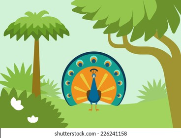 Peacock with flowing tail in forest habitat flat design cartoon vector wild animals birds. Flat zoo nature children collection.