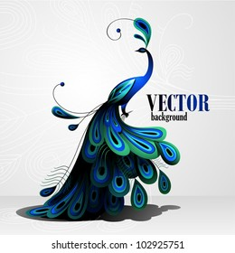 Peacock. Vector background
