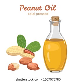 Peanut oil in glass bottle isolated on white background. Vector illustration of peanuts and green leaves in cartoon simple flat style.