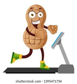 Peanut run on the conveyor belt, illustration, vector on white background.