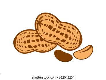 Peanut vector illustration. Peanut on a white background