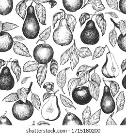 Pears and apples seamless pattern. Hand drawn vector garden fruit illustration. Engraved style fruit design. Retro botanical background.