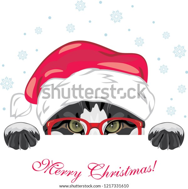 peeping-funny-cat-red-glasses-600w-12173