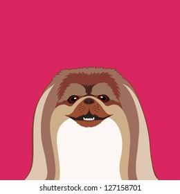 Pekingese, The buddy dog