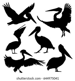 Pelican silhouette set. Vector illustration