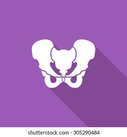 Pelvis icon. Flat vector related icon with long shadow for web and mobile applications. It can be used as - logo, pictogram, icon, infographic element. Vector Illustration.