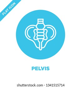 pelvis icon vector from human organs collection. Thin line pelvis outline icon vector  illustration. Linear symbol for use on web and mobile apps, logo, print media.