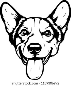 Pembroke Welsh Corgi Lap dog breed face head isolated pet animal domestic pet canine puppy purebred pedigree hound portrait peeking paws smiling smile happy art artwork illustration design set