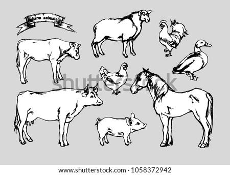 Image of: Dreamstime Pencil Drawing Shutterstock Pencil Drawing Farm Animals Vector Stock Vector royalty Free