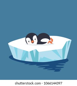 penguin sleep on ice floe