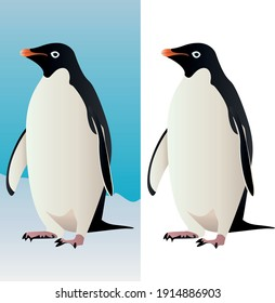Penguin stands on the snow - isolated on white background