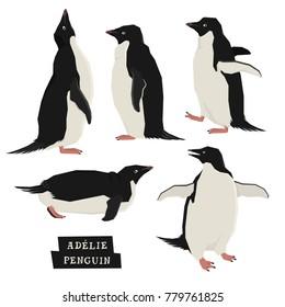 Penguins Geometric style