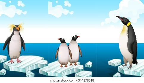 Penguins standing on iceberg illustration