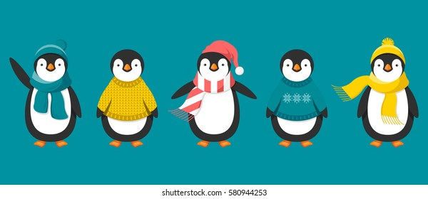Penguins in warm clothes