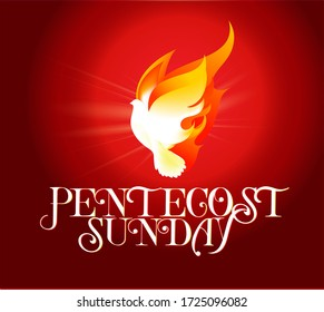 Pentecost Sunday dove logo vector illustration