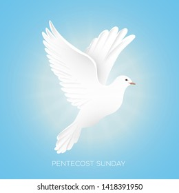 Pentecost Sunday with dove vector illustration