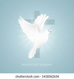 Pentecost Sunday with doves and crosses vector illustrator