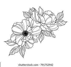 Peony Flower black and white