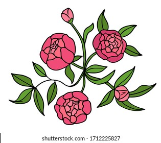 Peony flower graphic color isolated sketch bouquet illustration vector