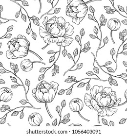 Peony flower seamless pattern drawing. Vector hand drawn engraved floral background with botanical rose, leaves and berry. Black ink sketch. Great for invitations, fabric, print, greeting cards decor