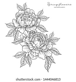 Peony flowers in japanese tattoo style. Hand drawn inked flowers. Black and white floral elements. Vector illustration.