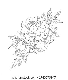 Peony flowers and leaves, tattoo compositions. Black linear illustration isolated on a white background. Flowers arrangements.