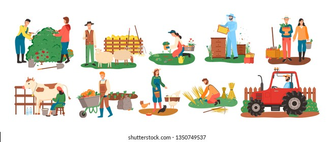 People at farm vector, farmers with cow and pigs, woman feeding chickens, couple with carrot basket, harvesting season. Bee honey and tractor cultivation