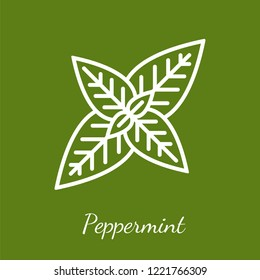 Peppermint leaves icon. Flavoring spices vector symbol.