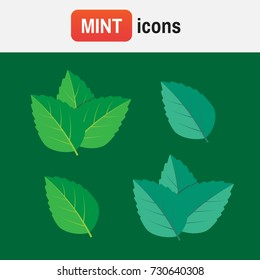 Peppermint mint vector. Mint green vector illustration set